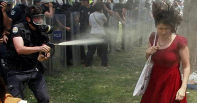 Gezi Eyleminde Geç Gelen Adalet